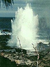 hawaii spouting horn